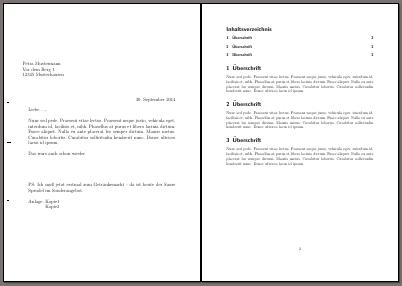 zwei Seiten des Brief-Artikel-Dokuments
