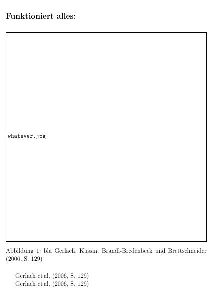 Korrekte Ausgabe der Literaturverweise in Gleitumgebungen vor dem ersten Verweis