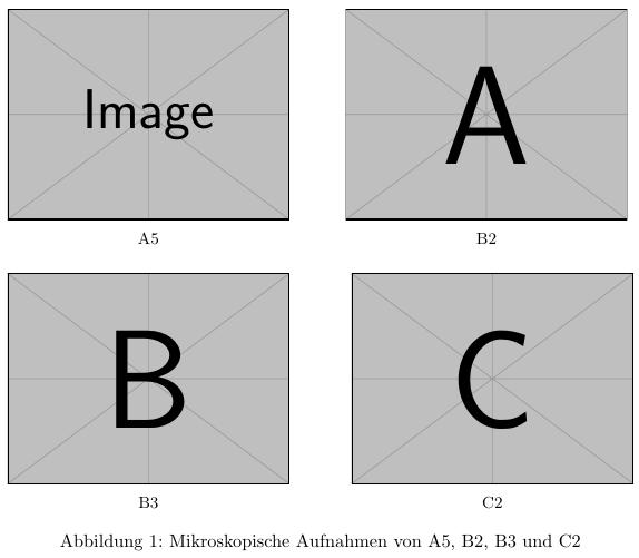 gemeinsame Abbildung mit subcaption