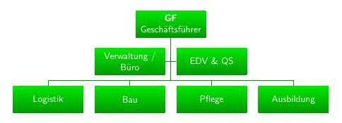 Organigramm mit TikZ